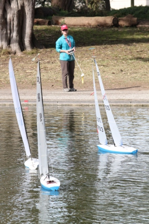 Maryrose Cassa, swiftly navigates her sailboat from the shore of Sprekles lake, Tuesday Feb 3rd 2015 golden gate park SF. Photo by Katie Sanders